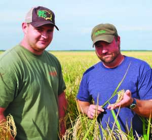 Pictured above are Gil Dreher, left, and rice consultant, Justin Hensley.