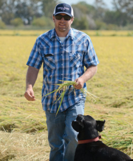 Rice operations manager Marc Breckenridge, accompanied by his lab Cosby, keeps harvest running smoothly in the fall.