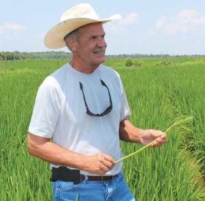 BD Fontenot Crop Production Services Eunice, La.