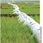 multiple inlet rice irrigation