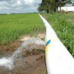 poly pipe in louisiana rice