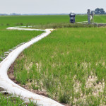 side inlet irrigation