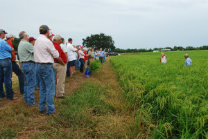 Horizon Ag field day