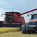 Express rice harvest