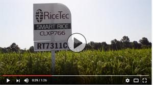 RiceTec video
