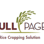 FullPage herbicide-tolerant rice hybrids