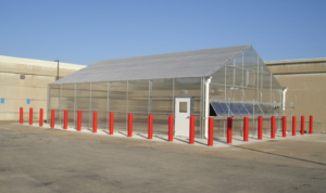 SEMO rice research greenhouse