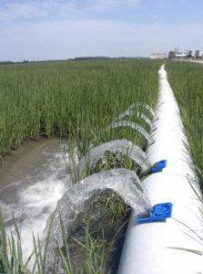 multilpe-inlet rice irrigation