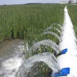 multiple-inlet irrigation