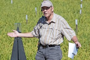 Noted UC Davis rice entomologist loses battle with cancer