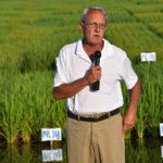 Steve Linscombe provisia rice