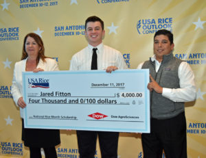 2017 rice month scholarship