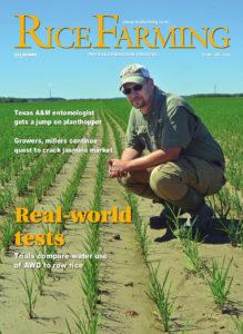 February 2018 Rice Farming