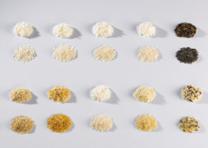 different rice varieties