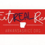 eat real rice bumper sticker