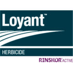 loyant herbicide with rinskor active