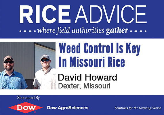 Rice Advice