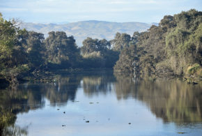California water board's actions a sign of things to come