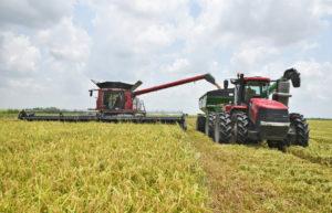 combine transfers grain