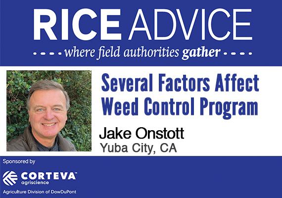 rice advice california