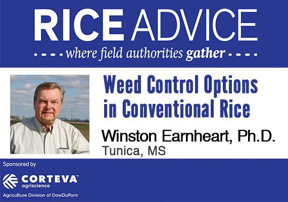 rice advice mid-south