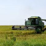 University of Arkansas rice plot harvester