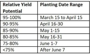 planting date study