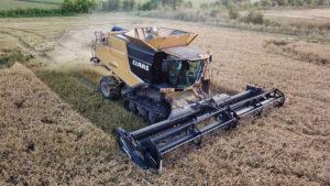 bay city, Texas, rice harvest
