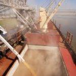 rice loading on ship