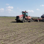 drilling seeding rice missouri