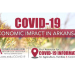 U Arkansas covid-19 report