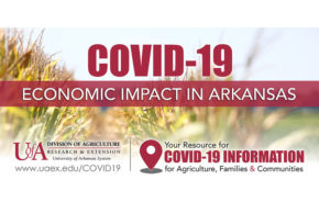 UArk takes a hard look at COVID-19 impacts on state's economy