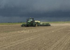 mississippi rice planting