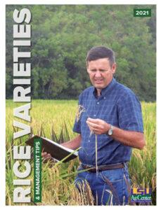 2021 LSU rice varieties guide